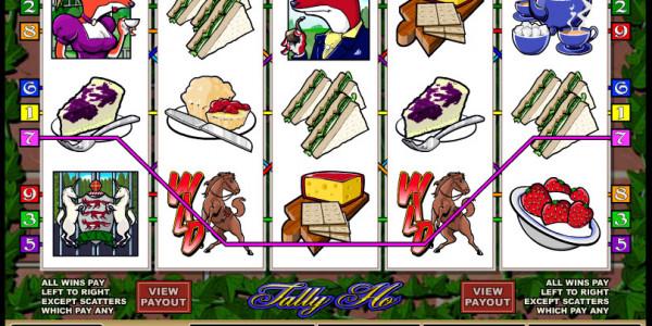 Tally Ho MCPcom Microgaming2