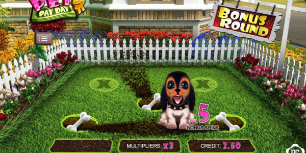 Pet's Pay Day mcp4