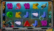 Wild Dolphins MCPcom Oryx Gaming