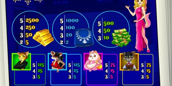 Cats & Cash MCPcom Play'n GO pay2
