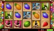 Ninja Fruits MCPcom Play'n GO
