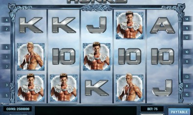 Scandinavian Hunks MCPcom Play'n GO