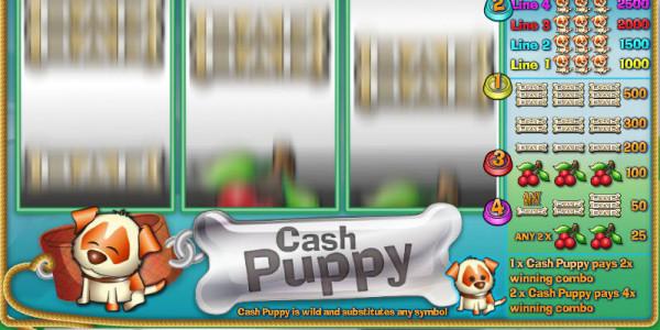 Cash Puppy MCPcom Saucify2