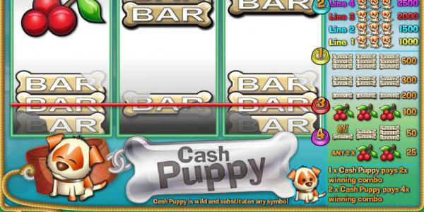 Cash Puppy MCPcom Saucify3