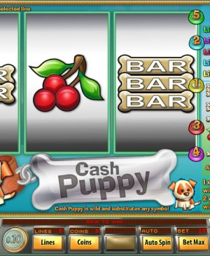Cash Puppy MCPcom Saucify