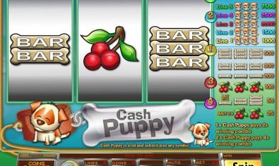 Cash Puppy MCPcom Saucify