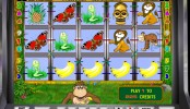 Crazy Monkey MCPcom Igrosoft