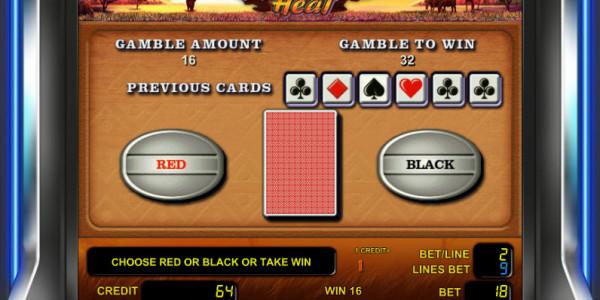 Safari Heat MCPcom Novomatic gamble
