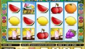 Fruit party MCPcom Amaya (Chartwell)