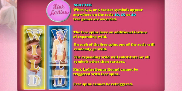 Grease – Pink Ladies & T-Birds MCPcom Daub Games pay2