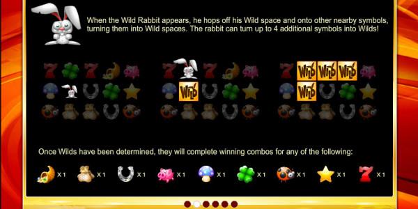 Fortune Race MCPcom Espresso Games pay2