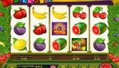 Fruit Fever MCPcom Espresso Games
