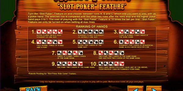 Reely Poker MCPcom Leander Games pay2