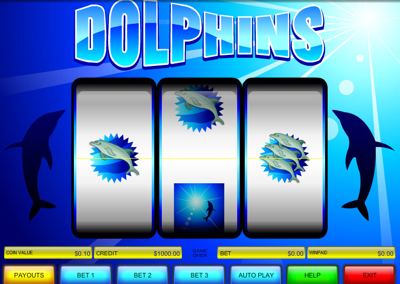 Dolphins MCPcom B3W Group