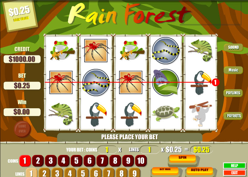 Rain Forest MCPcom B3W Group