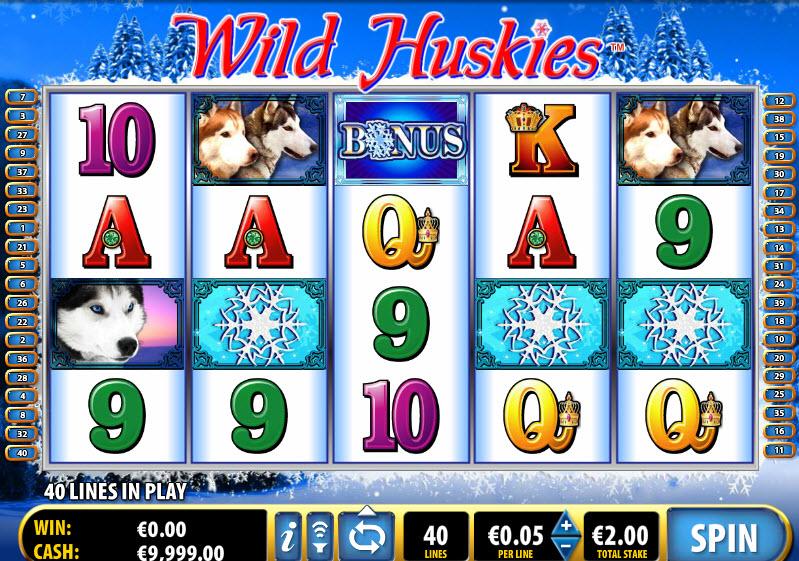 Wild Huskies MCPcom Bally