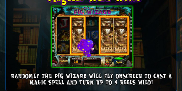 The Pig Wizard MCPcom  Blueprint Gaming pay2
