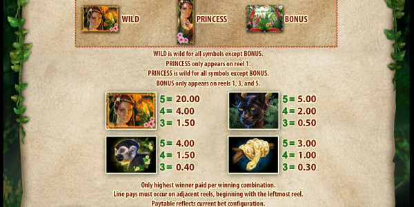 Rainforest Dream Video Slots by WMS pay