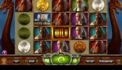 Vikings Go Wild Video Slots by Yggdrasil MCPcom