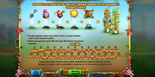 Bumper Crop Video Slots by Playson MCPcom pay2