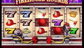 Firehouse Hounds Video slots by IGT MCPcom
