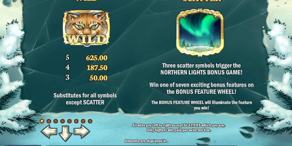 Wild North Video Slots by Play'n GO MCPcom pay2