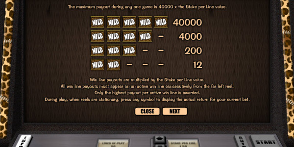 Go Wild on Safari Video Slots by Realistic Games MCPcom pay