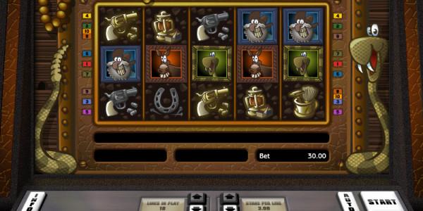 Randalls Riches Video Slots by Realistic Games MCPcom