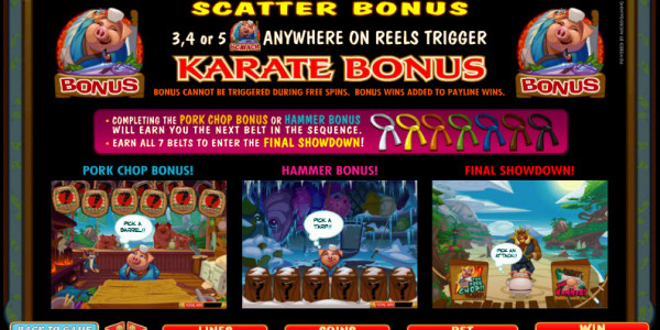 Karate Pig MCPcom Microgaming pay