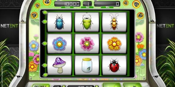 Beetle frenzy main
