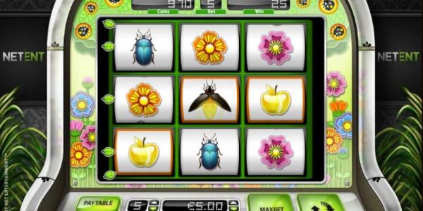 Beetle frenzy wild