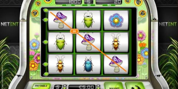 Beetle frenzy win line 2