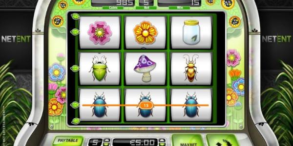 Beetle frenzy win line